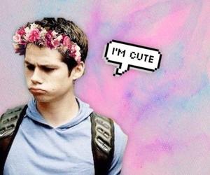 boy, flowers, and thomas image