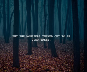 dark forest, forest, and Taylor Swift image