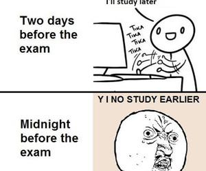 exam, funny, and study image