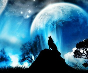 moon, wolf, and night image