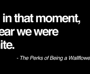 quote, the perks of being a wallflower, and infinite image