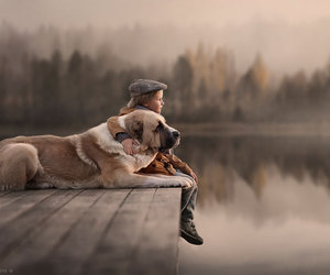 dog, friends, and boy image