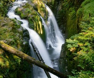tranquil, nature, and waterfall image
