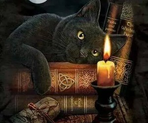 book, candle, and cat image