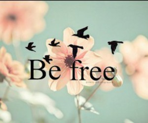 be free and quote image