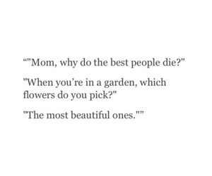 flowers, quotes, and beautiful image