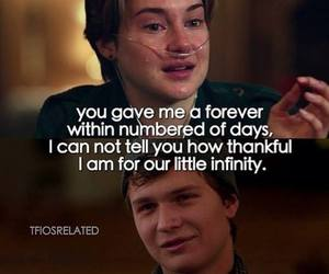 tfios, the fault in our stars, and infinity image