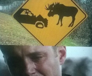 dean winchester, moose, and supernatural image