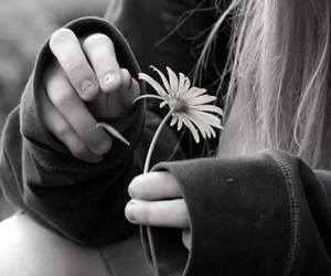 flowers, black and white, and girl image