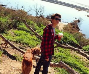 boy, viner, and youtuber image