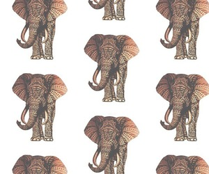 background, elephant, and repeat background image