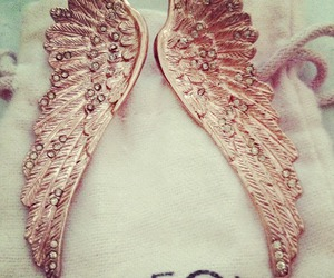 fashion, wildfox, and wings image