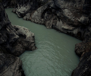 dark and nature image
