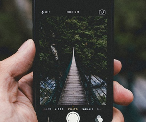 iphone, nature, and bridge image