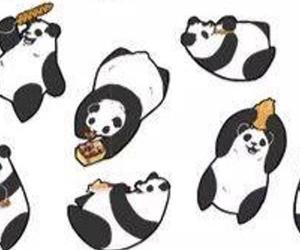 bonito, happy, and pandas image