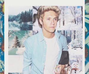 flower, wallpaper, and niall horan image