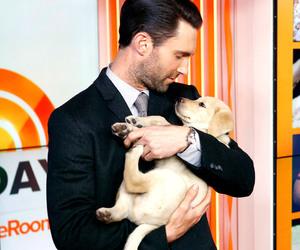 adam, dog, and maroon5 image
