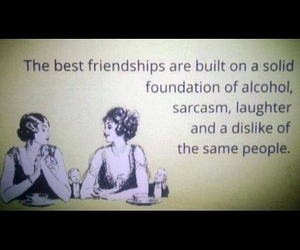 friendship, sarcasm, and alcohol image