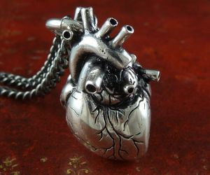 heart, necklace, and jewelry image