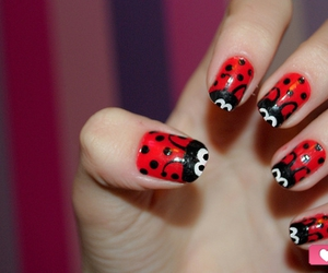 nails, red, and ladybug image