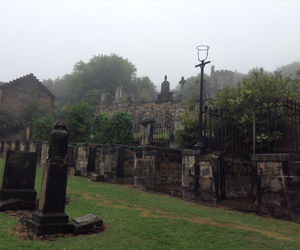 cementery, foggy, and green image