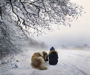 dog, pet, and snow image