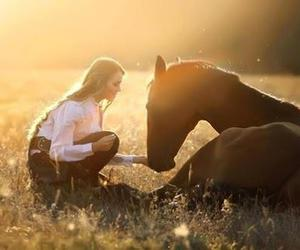 girl, horse, and sun image
