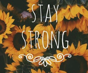 flowers, strong, and sunflower image