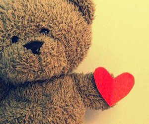heart and bear image