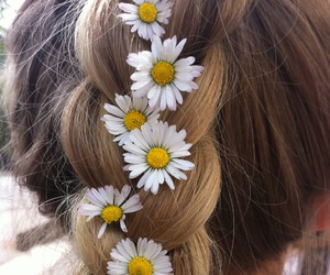 hair, flowers, and daisy image