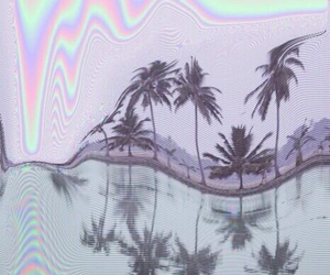 grunge, tumblr, and palms image