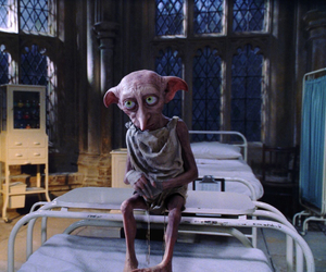 dobby, harry potter, and potter image