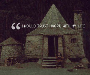 harry potter, hagrid, and trust image