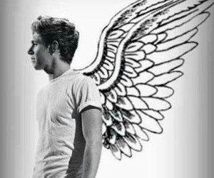 horan, niall, and fly image