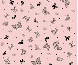 butterfly, pink, and wallpaper image