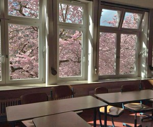 pink, japan, and school image