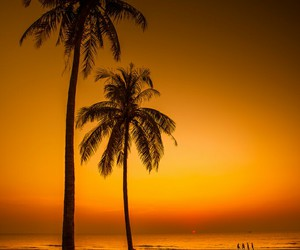 beach and landscape image