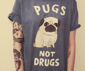 pug, drugs, and tattoo image