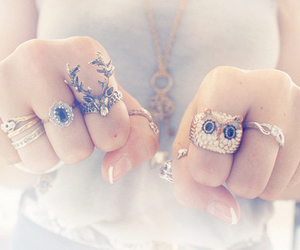 rings, owl, and ring image