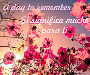 espanol, song, and a day to remember image