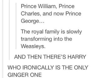 royal family and harry potter | image
