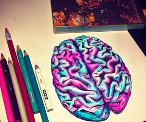 anatomy, art, and brains image