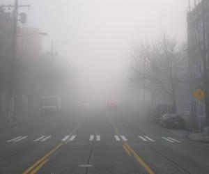 fog, grunge, and pale image