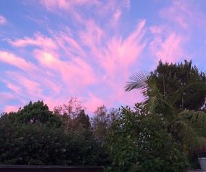 sky, grunge, and plants image