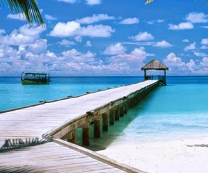 beach, Island, and travel image