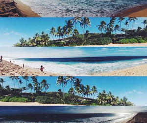 beach, coconut, and paradise image