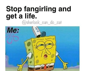 funny, fangirl, and fandom image