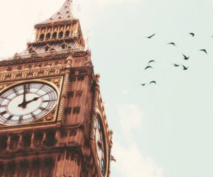 london, Big Ben, and bird image