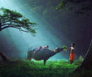 child, nature, and indonesia image