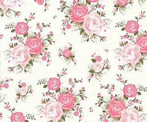 flowers, rosa, and backgrounds image
